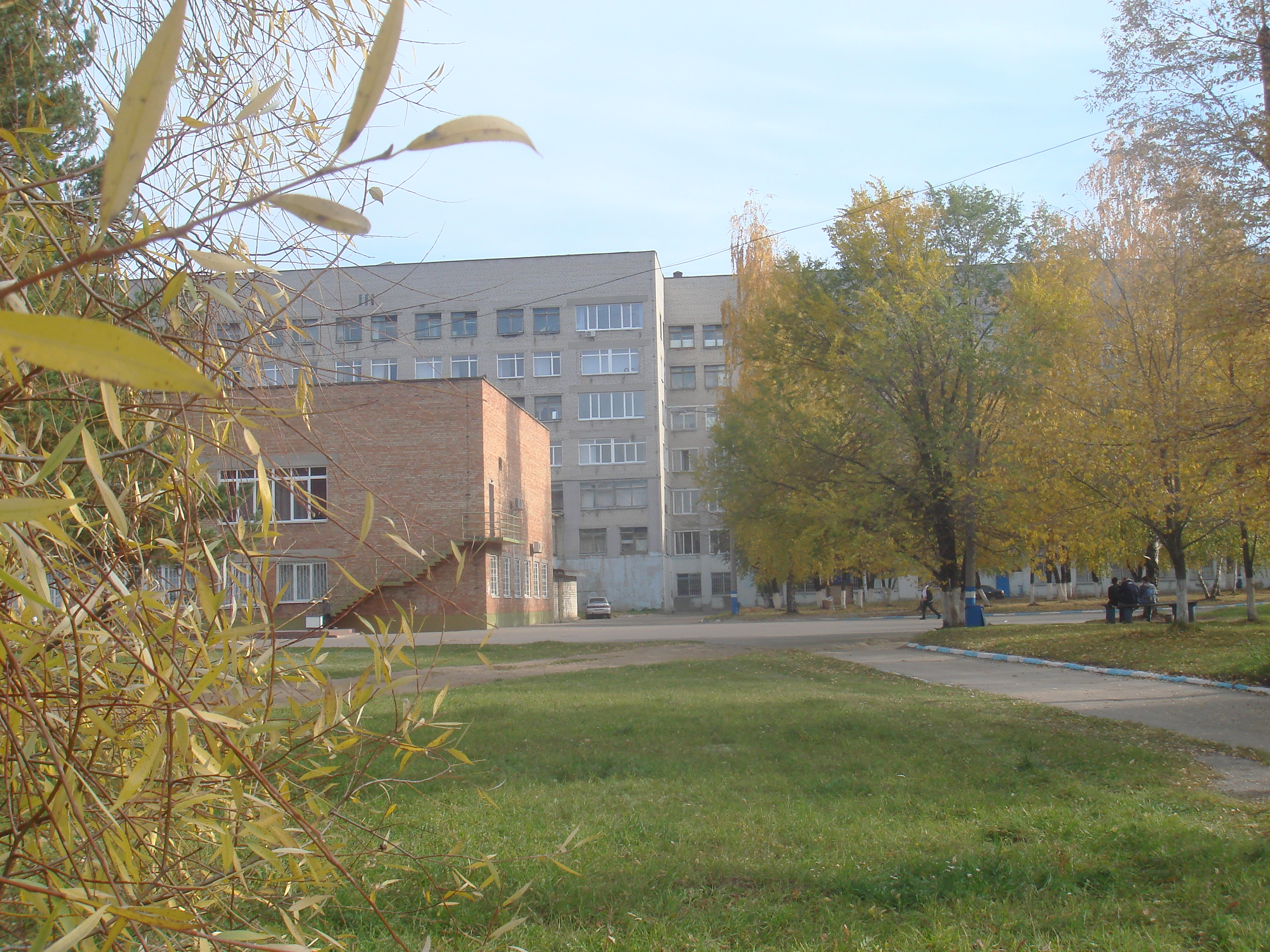 Томск клиника соломатиной сайт
